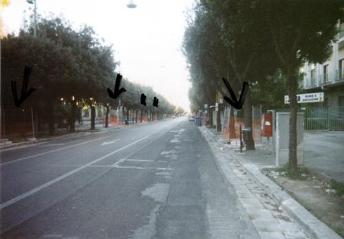[IMG]http://img1.freeforumzone.it/upload1/820739_LE viale gallipoli.jpg[/IMG]
